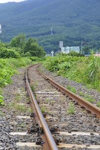 ローカル線の線路の写真素材 [FYI00156557]