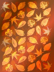 秋のフレームの素材 [FYI00157332]