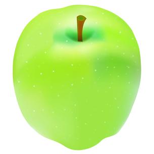 りんごの写真素材 [FYI00158345]