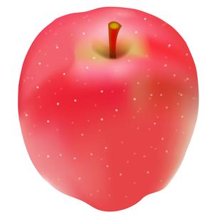 りんごの写真素材 [FYI00158356]