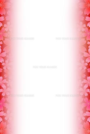 桜の素材 [FYI00159046]