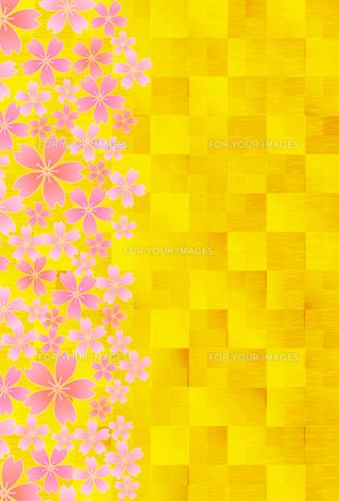 桜の写真素材 [FYI00159058]