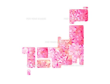 桜 日本地図の写真素材 [FYI00159408]