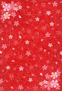 桜の写真素材 [FYI00162614]