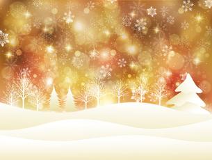 雪の写真素材 [FYI00162855]
