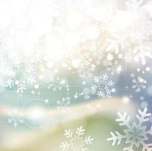 雪の写真素材 [FYI00162888]