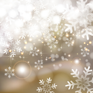 雪の写真素材 [FYI00162894]