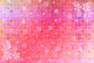 桜の写真素材 [FYI00163345]
