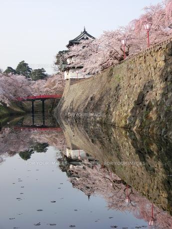 弘前城 さくらの素材 [FYI00164133]