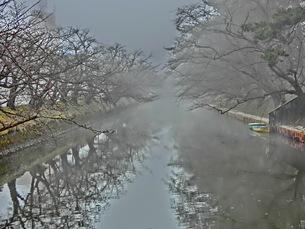 弘前公園 濠の素材 [FYI00164138]