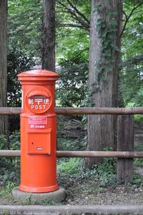 レトロなポストと大木の写真素材 [FYI00164477]