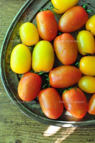 プチトマトの素材 [FYI00164657]