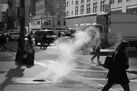 NYC-冬の風物詩の写真素材 [FYI00164690]