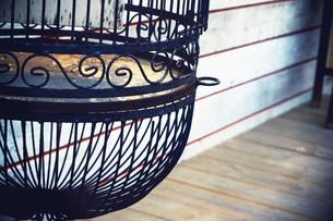 鳥かごの写真素材 [FYI00164928]