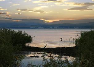 湖畔1の写真素材 [FYI00164966]