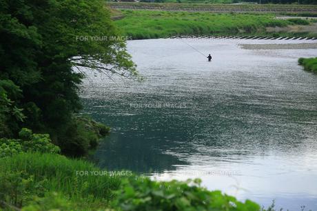 アユ釣りの写真素材 [FYI00165019]