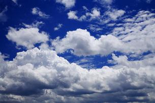 青空の写真素材 [FYI00165020]