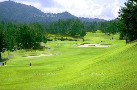 新緑のゴルフコースの写真素材 [FYI00165054]