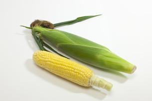 夏野菜・とうもろこしの写真素材 [FYI00165232]