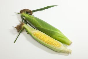 夏野菜・とうもろこしの写真素材 [FYI00165235]