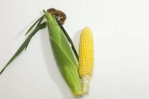 夏野菜・とうもろこしの写真素材 [FYI00165238]