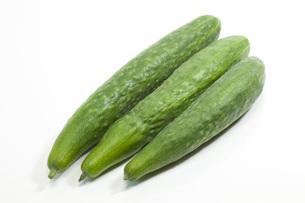 夏野菜・キュウリの写真素材 [FYI00165258]