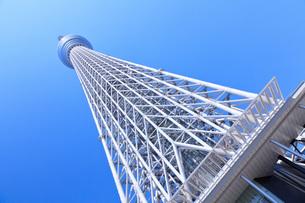 東京スカイツリーの写真素材 [FYI00165887]
