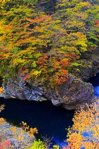 秋の塩原渓谷・稚児が淵の写真素材 [FYI00166021]