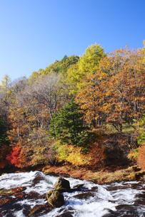 秋の日光竜頭の滝の写真素材 [FYI00166039]