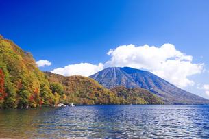 秋の日光中禅寺湖と男体山の写真素材 [FYI00166066]