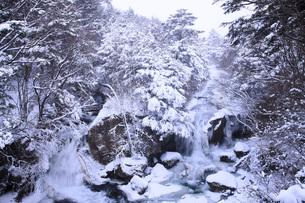 栃木県・奥日光竜頭の滝の雪景色の写真素材 [FYI00166085]