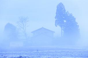 厳寒の朝の写真素材 [FYI00166099]