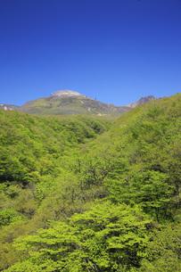 新緑の那須高原・那須連山を望むの写真素材 [FYI00166114]
