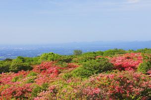 山ツツジ咲く那須高原の写真素材 [FYI00166127]