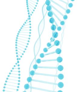 青い透明なDNAの写真素材 [FYI00166233]