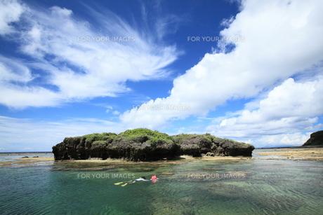 南の島で戯れるカップルの写真素材 [FYI00166388]