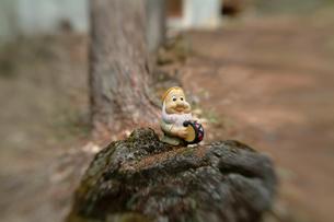 森の小人の素材 [FYI00166402]