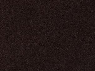 カーペットの写真素材 [FYI00166487]