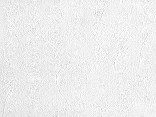 白い壁紙の写真素材 [FYI00166500]
