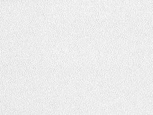 白い壁紙の写真素材 [FYI00166521]