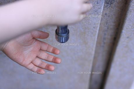 三歳児の手の写真素材 [FYI00166656]