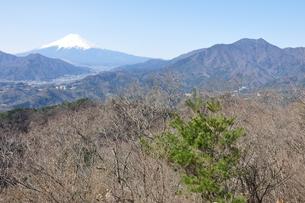 高川山からの富士山の素材 [FYI00166726]