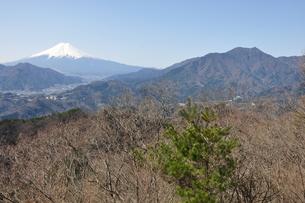 高川山からの富士山の素材 [FYI00166728]