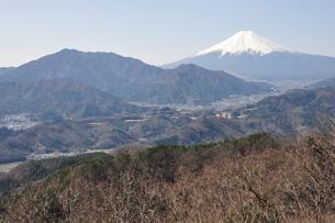 高川山からの富士山の写真素材 [FYI00166734]