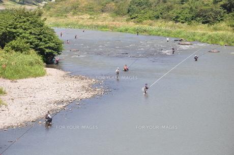 相模川 釣り人の賑わいの写真素材 [FYI00167718]