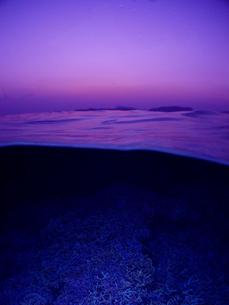 夕焼けの半水面の写真素材 [FYI00168277]