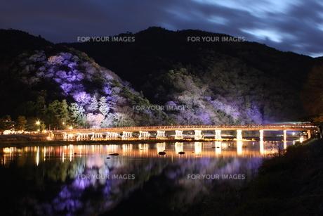 渡月橋ライトアップの写真素材 [FYI00168281]
