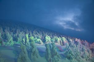 樹氷の写真素材 [FYI00168360]