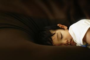 クッションでお昼寝の写真素材 [FYI00168386]