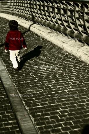 寒い日の街路の素材 [FYI00168414]